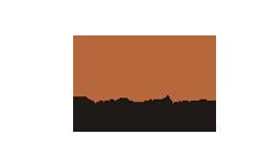 LogoDCT