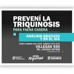 PLACATRIQUINOSISANALISIS-1-