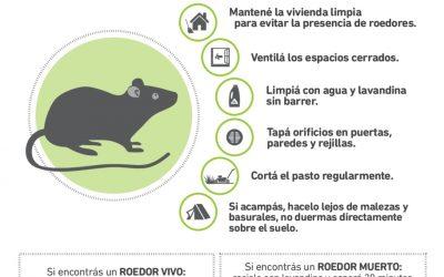 Hantavirus: la importancia de la prevención