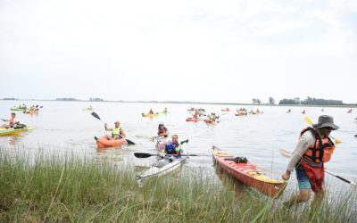 Kayakeada en la Laguna de Rocha