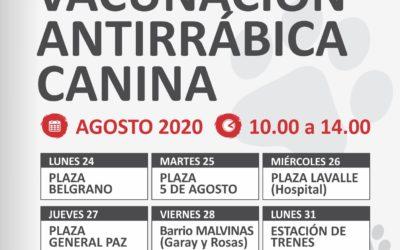 Campaña de vacunación antirrábica obligatoria y gratuita
