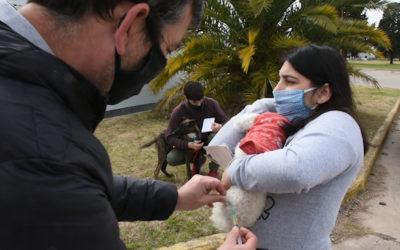 Finalizó la campaña de vacunación antirrábica obligatoria y gratuita