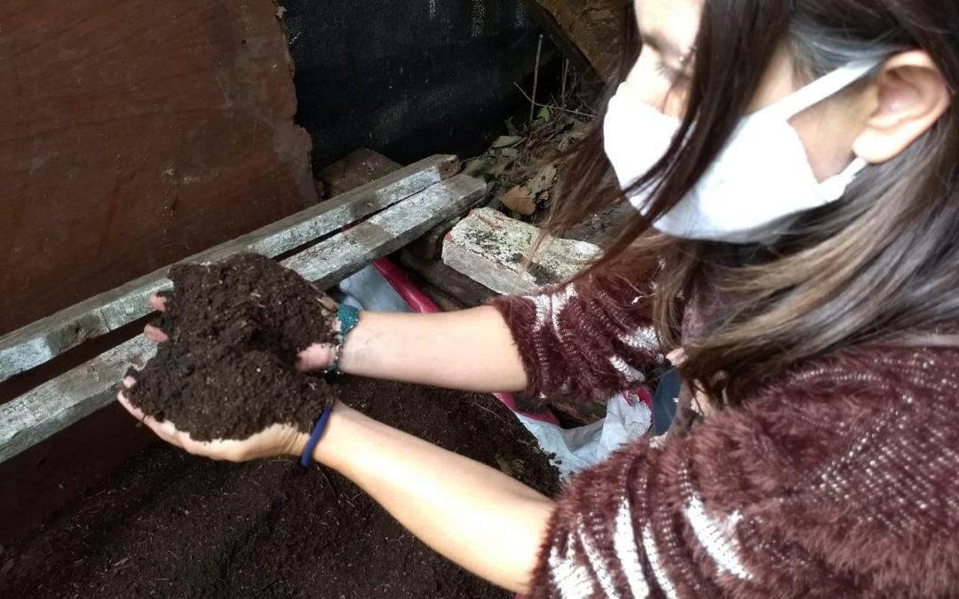 Medio Ambiente: guía de compostaje hogareño