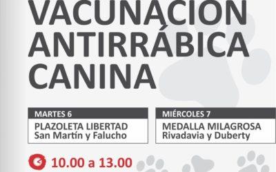Campaña de Vacunación antirrábica: segunda etapa