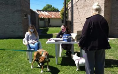 Vacunación antirrábica: continúa la campaña de tenencia responsable de mascotas