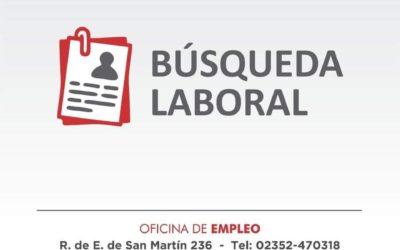 Oficina de Empleo: actualidad del área