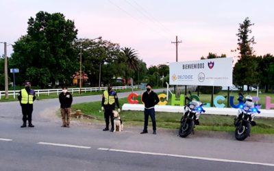 Seguridad: Operativos de Policía Vial con canes de Dirección Cinotecnia de La Plata