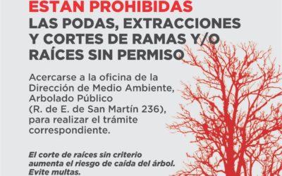 Atención: para poda, cortes de raíces y extracción de árboles se necesita permiso municipal