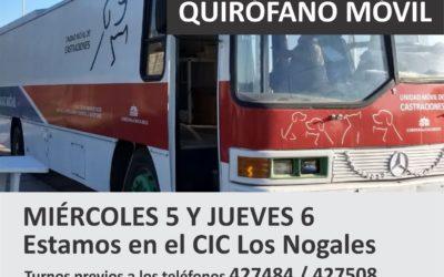Esta semana castraciones en el barrio Los Nogales