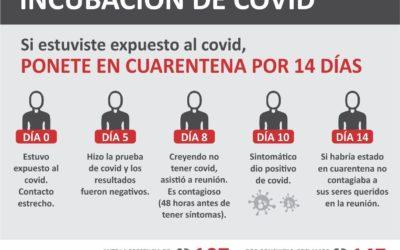 Cronograma de incubación de covid-19