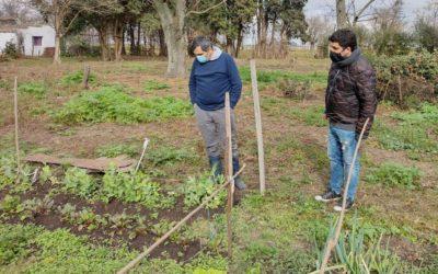 Programa Huertas Familiares en las localidades