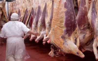 Exportaciones de carne: se amplió la restricción para disminuir precios