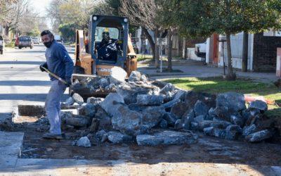 Obras públicas en simultáneo en nuestra comunidad